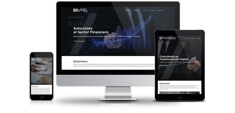 BD Holding Group websites
